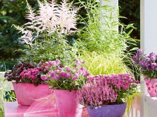 balkon geschm ckt mit pflanzen fassaden begr nung pictures to pin on pinterest. Black Bedroom Furniture Sets. Home Design Ideas